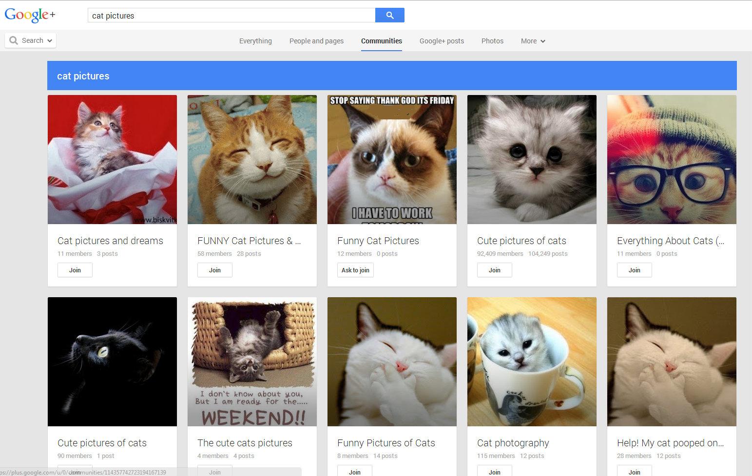 googlecatsedited