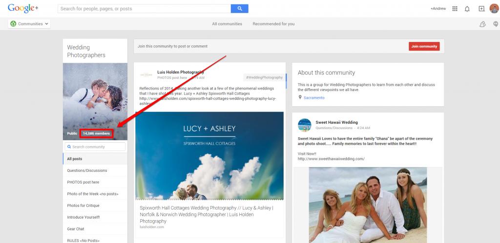 Google Plus Wedding Photog Community Page with Arrow