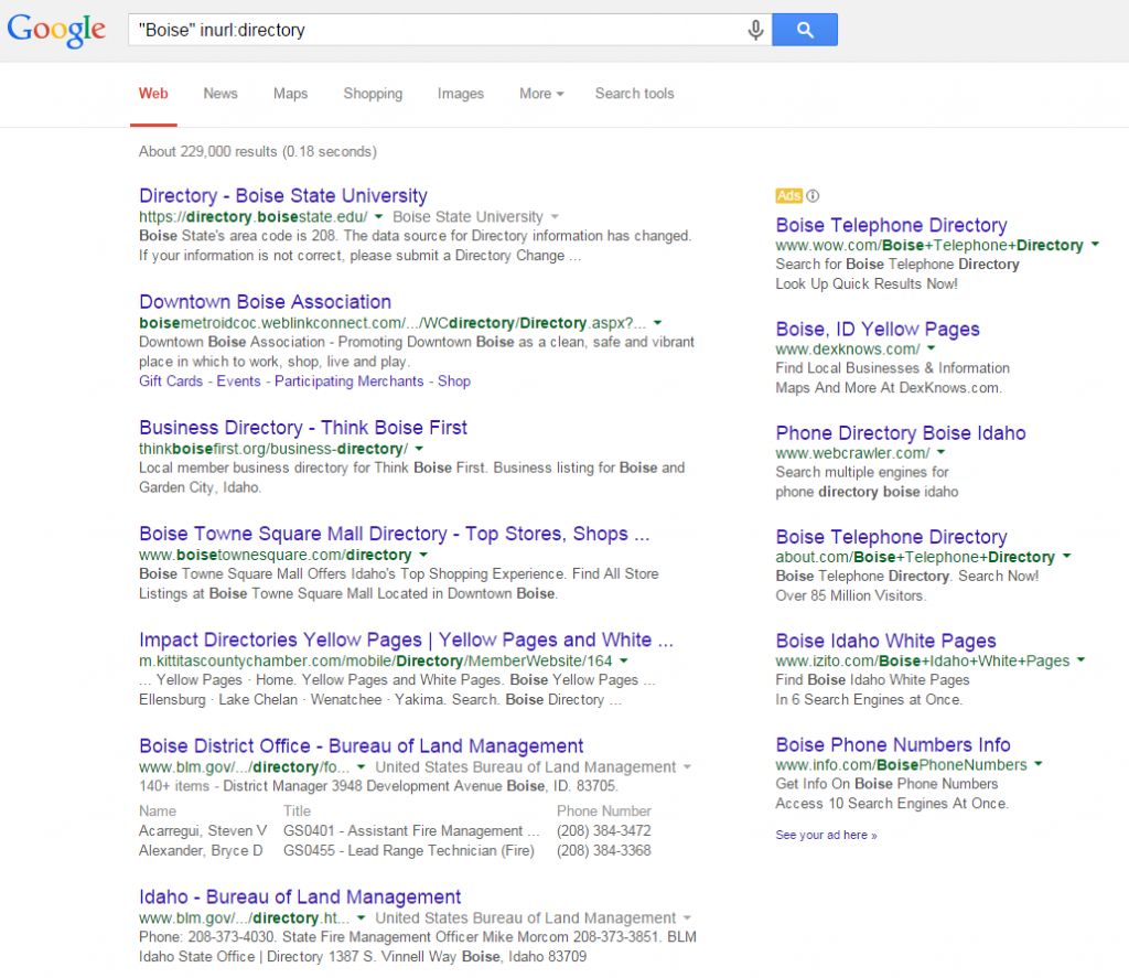 Advertising Example Local Directory SERP