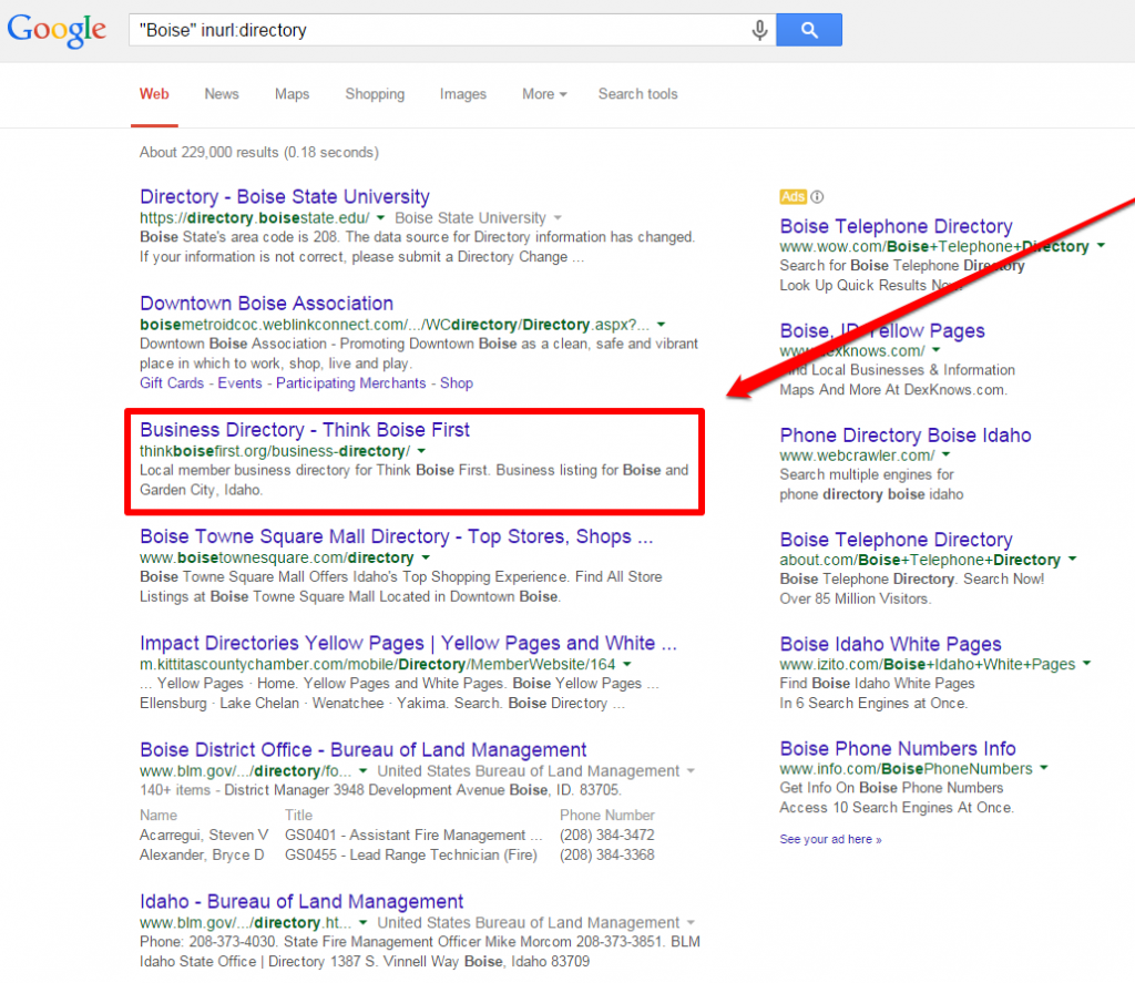 Advertising Example Local Directory SERP with box