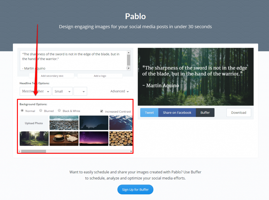 Pablo Background Options