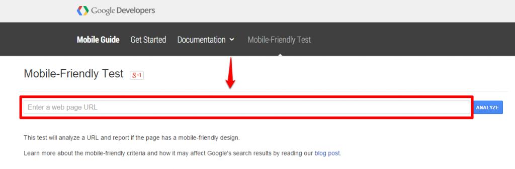 Google Tool Homepage URL Box