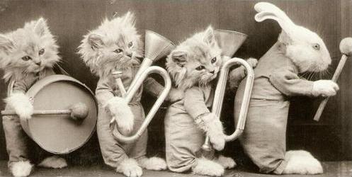 tinycats