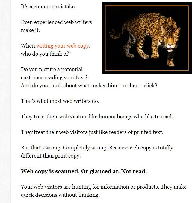 Leopard_Screenshot.jpg