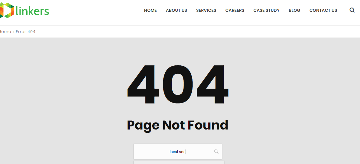 404 page search tab