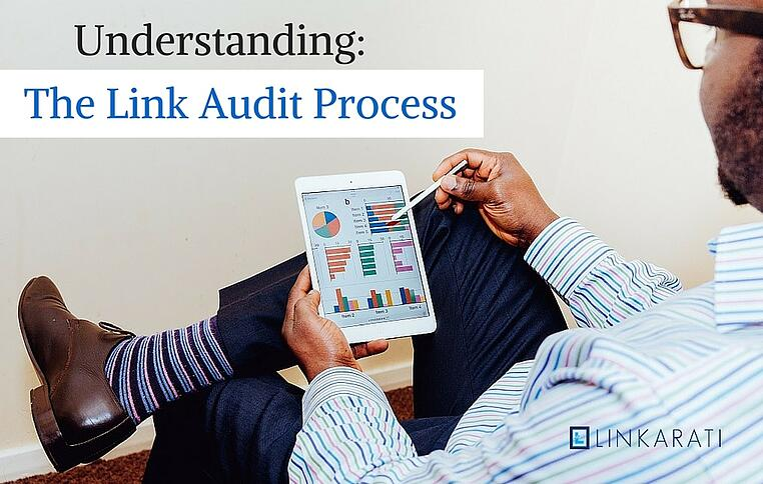Understanding the link audit process image