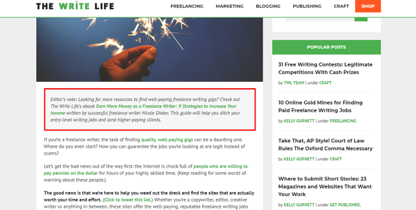 Screenshot of The Write Life Blog post with call-to-action in italics beneath the image of a hand holding sparkler.