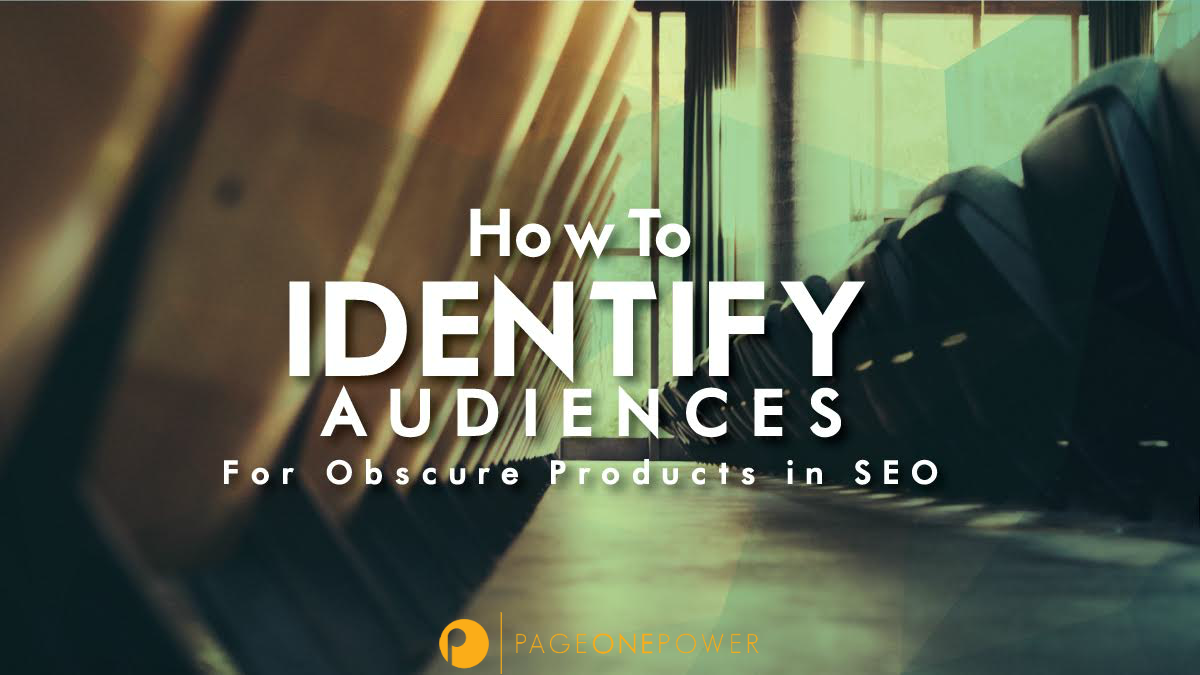 How_to_Identify_Audiences_for_Obscure_Products_in_SEO_logo2.png